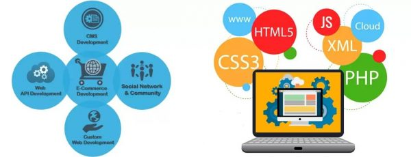 Web development info graphics